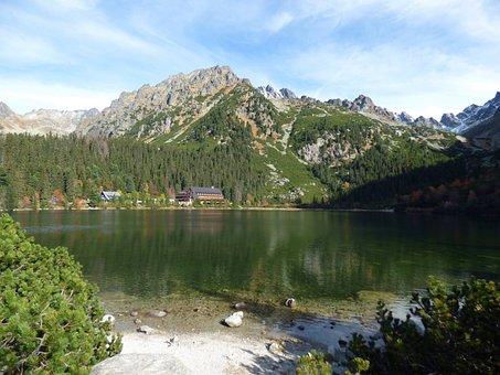 Vysoké Tatry, Popradské Lake, Forests, Mountains