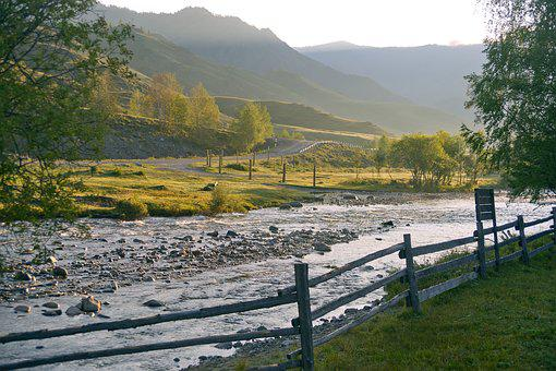 River, Morning, Altai, Beautiful, Nature, Green, Summer