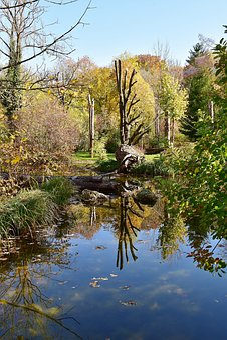 Water, Mirroring, River, Reflections, Lake, Park