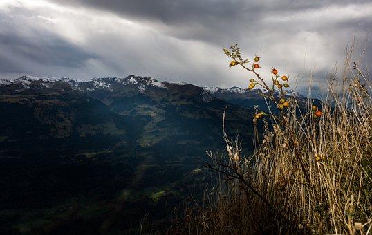 Hagenbutte, View, Cloudiness, Sky, Nature, Landscape