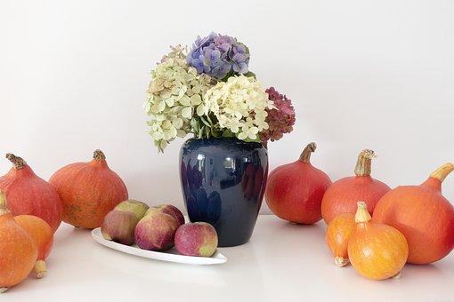 Pumpkin, Hokkaido, Vegetables, Orange, Yellow