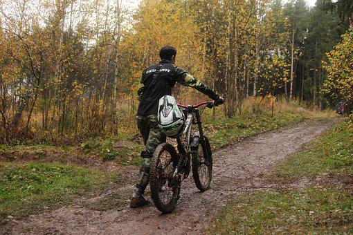 Cycling, Sports, Autumn, Forest, Road, Bike, Rider, Guy