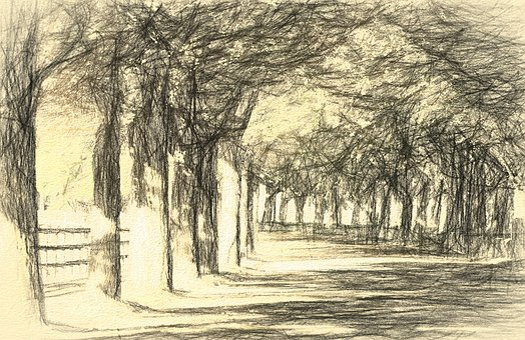Landscape, Avenue, Tree, Road, Nature, Street, Sketch