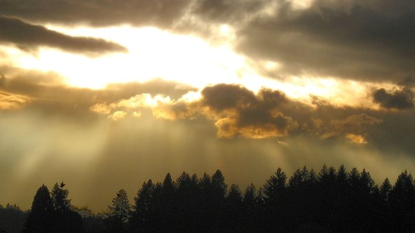 Fog, Evening, Landscape, Sky, Clouds, Nature