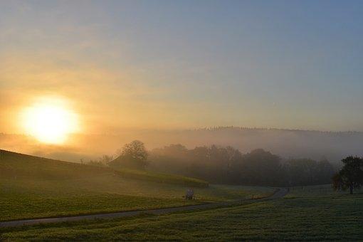 Landscape, Fog, Morgenstimmung, Back Light, Nature
