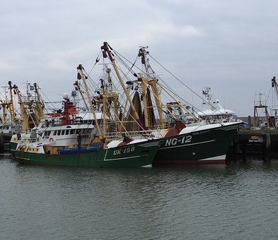 Father And Son, Trawler, Ship, Fishing Vessel, Port