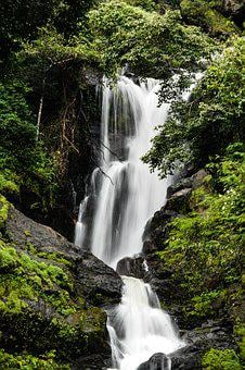 Waterfall, Nature, Scenic, Fall, Stream, Forest
