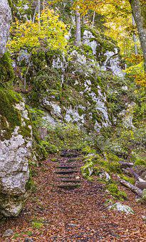 Stairs, Forest, Stone Stairway, Hiking, Trail