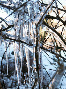 Icicle, Winter, Ice, Cold, Frozen, Wintry, Icy