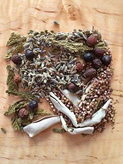 Herb, Herbal, Natural, Plant, Lavender, Heather, Cedar