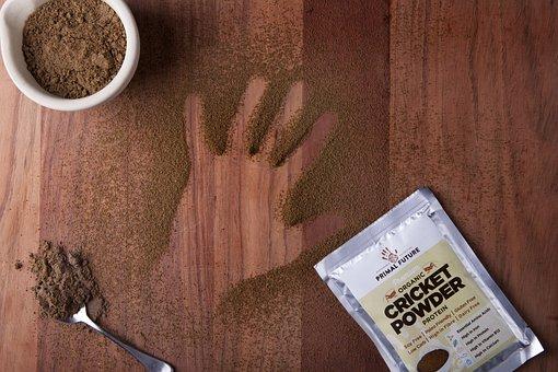 Primal Future, Cricket Powder, Cricket Flour