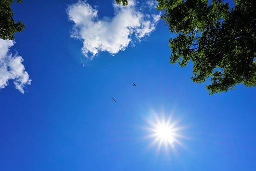Glider Pilot, Aircraft, Sky, Clouds, Air Sports