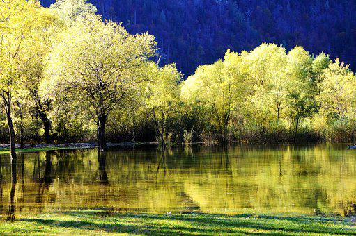 Autumn, Reflections, Lake, Lakes Fusine, Italy, Nature