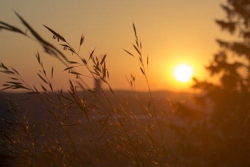 Sunset, Nature, Evening Sky, Landscape, Romantic, Sun