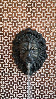 Lion Head, Gargoyle, Lion, Fountain, Head, Spit, Water