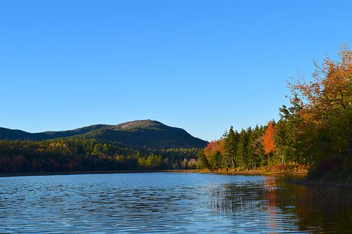 Lake, Trees, Foliage, Mountain, Reflection, Nature