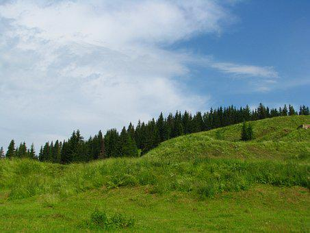 Forest, Mountain, Slope, Blue Sky, Nature, Sky
