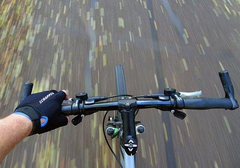 Mountain Biking, Bike, Sport, Wheel, Bicycle