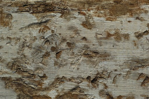 Wood-fibre Boards, Texture, Copy Space, Dry