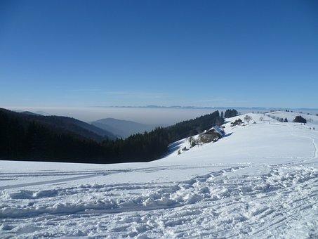 Vosges, Snow, Winter, Mountains, Fog, Black Forest