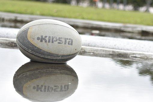 Rugby, Ball, Water, Field, Grass, Sport