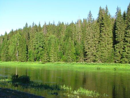 Landscape, Nature, Russia, Forest, River, Trees, Sun