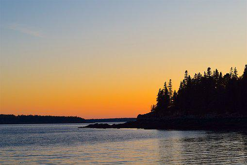 Sunset, Pine Trees, Ocean, Shore, Water, Nature, Forest
