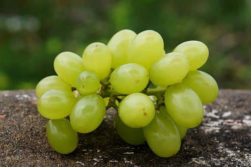 Food, Green Grapes In Ninh Thuan, Vietnam
