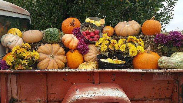Pumpkin, Squash, Gourd, Fall, Vegetable, Truck, Harvest