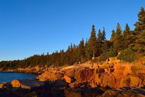 Sunset, Trees, Rocks, Pine Trees, Maine, Nature