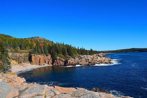 Shore, Rocks, Ocean, Pine Trees, Maine, Nature, Water