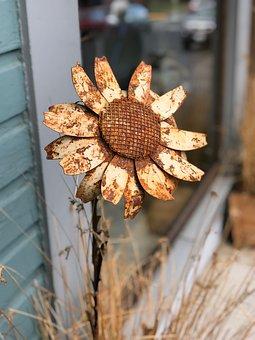 Sunflower, Metal, Rustic, Rusty, Flower