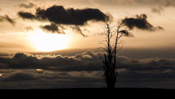Sun, Mood, Back Light, Clouds, Sunrise, Atmosphere