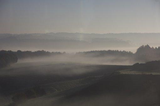 Autumn, Fog, Ground Fog, Beautiful, Nature, Landscape