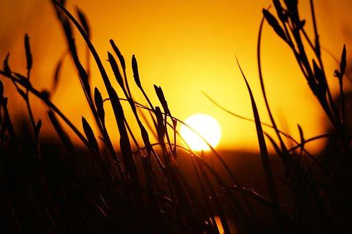 Sunset, Sun, Yellow