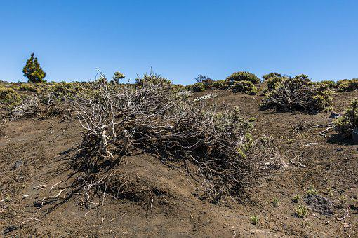 Volcano, Canary Islands, Volcanic, Spain, Landscape