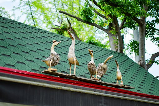Wood, Duck, Doll, Roof, New, Goose, Animal, Sculpture