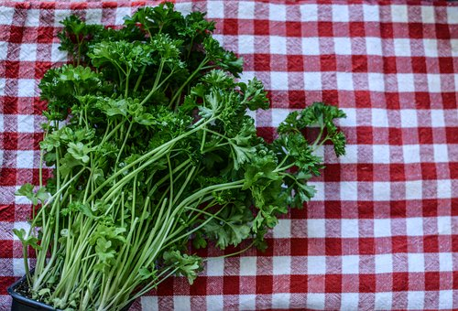 Parsley, Herb, Kitchen, Ingredient, Food, Healthy