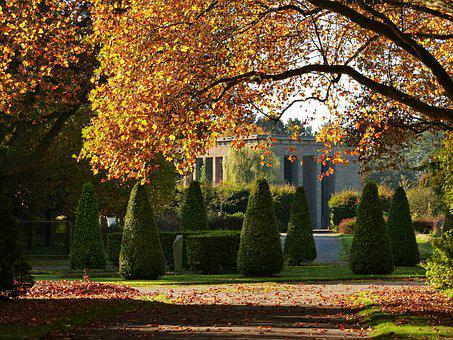 Fall Foliage, Leaves, Red Leaves, Autumn, Leaf