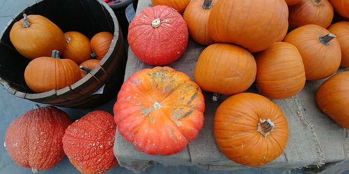 Pumpkins, Autumn, Orange, Red, Holiday, Season, Harvest