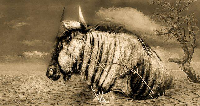 Gnu, Wildlife, Drought, Painting, Abstract, Africa