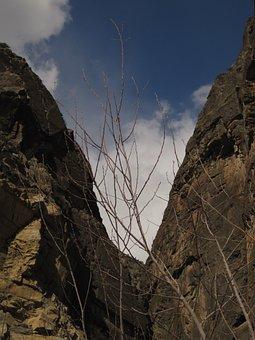 Mountains, Tajikistan, Tree, Landscape, Sky, Nature