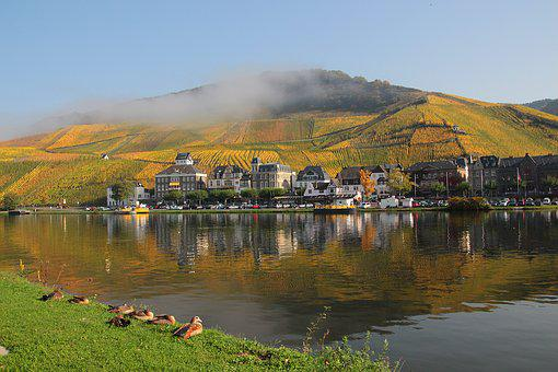 Mosel, Vineyards, Mirroring, Landscape, Germany, Wine