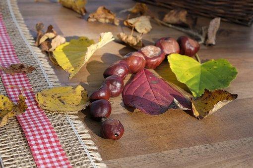 Chestnut, Leaves, Autumn, Fall Foliage, Decoration