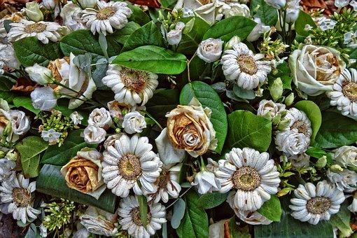 Gerbera, Daisy, Bouquet, Flowers, Bouquet Of Flowers