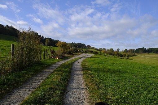 Away, Lane, Trail, Landscape, Green, Nature
