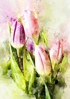 Tulips, Flowers, Tulip Bouquet, Violet, Pink, Nature