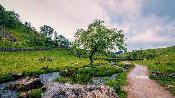 Malham, Yorkshire Dales, Landscape, Spring, Stream