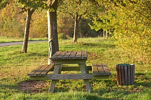 Bank, Resting Place, Forest, Seat, Rest, Nature