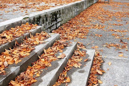 Stairs, Dry Leaves, October, Autumn Foliage, Rain